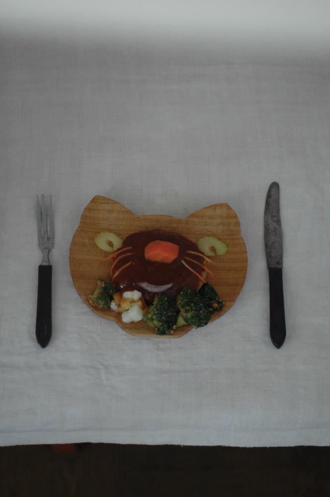 猫 dish コード